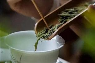 绿茶怎么泡才好喝?